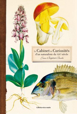 Brigitte Chamagne Rollier et Joëlle Defaÿ-Couverture Jaquette Cabinet de Curiosités