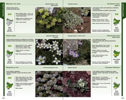 Feuilletage-Guide-de-la-flore-blanc