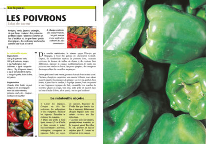 Feuilletage-Recettes-et-produits-poivrons