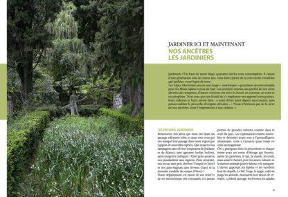Feuilletage-bien-jardiner-dans-les-Alpes-Maritimes-jardin-d-ornement-1