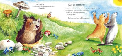 Feuilletage-marmottes-des-merveilles-eveil