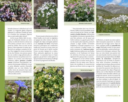 Randonnées botaniques - article