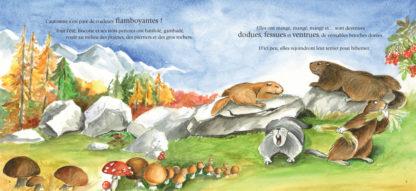 Feuilletage-crottes-de-marmottes-montagne