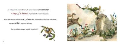 Feuilletage-Une-Enorme-Faim-De-Loup-marmotte